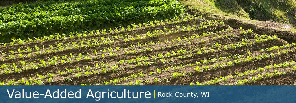 agriculture rock county